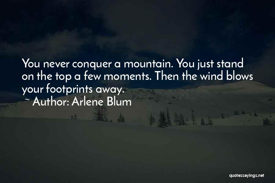 Mountain Conquer Quotes By Arlene Blum