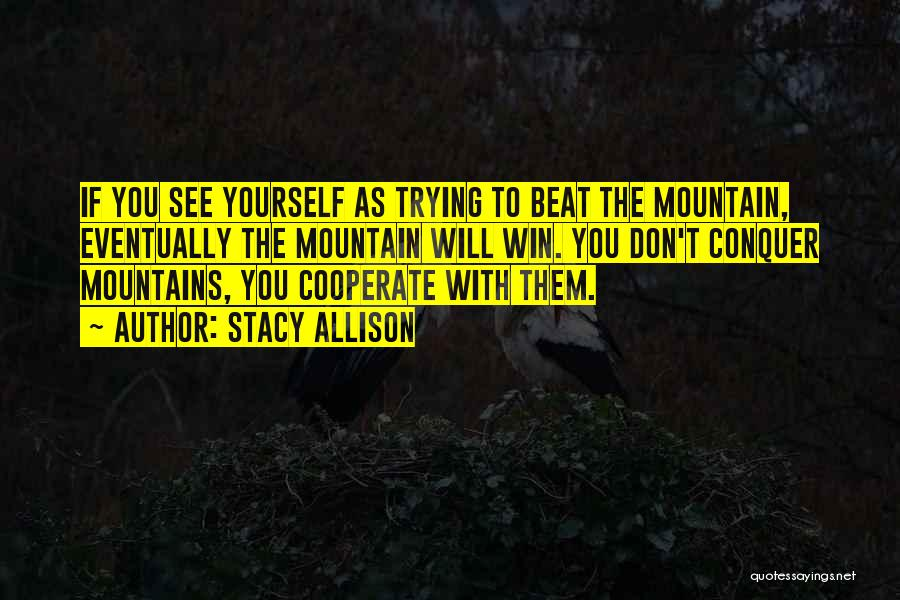 Mountain Conquer Quotes By Stacy Allison
