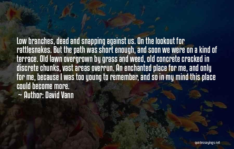 Mountain Goat Quotes By David Vann