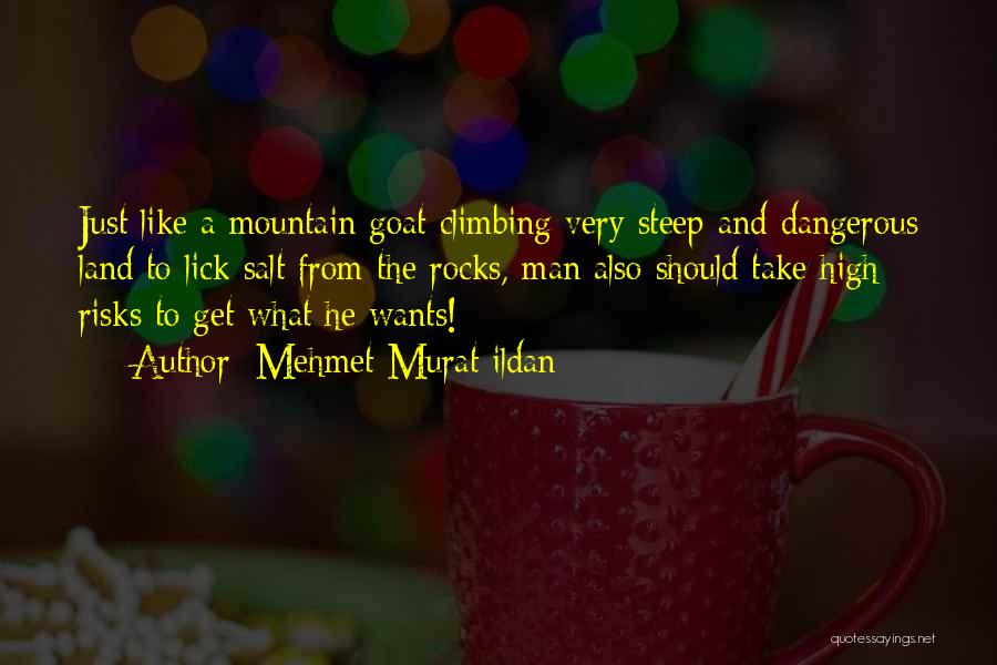 Mountain Goat Quotes By Mehmet Murat Ildan