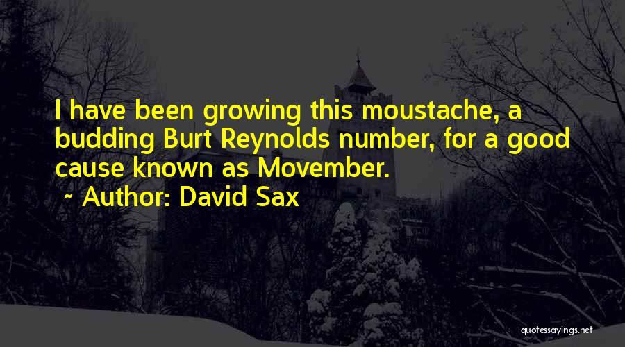 Moustache Quotes By David Sax