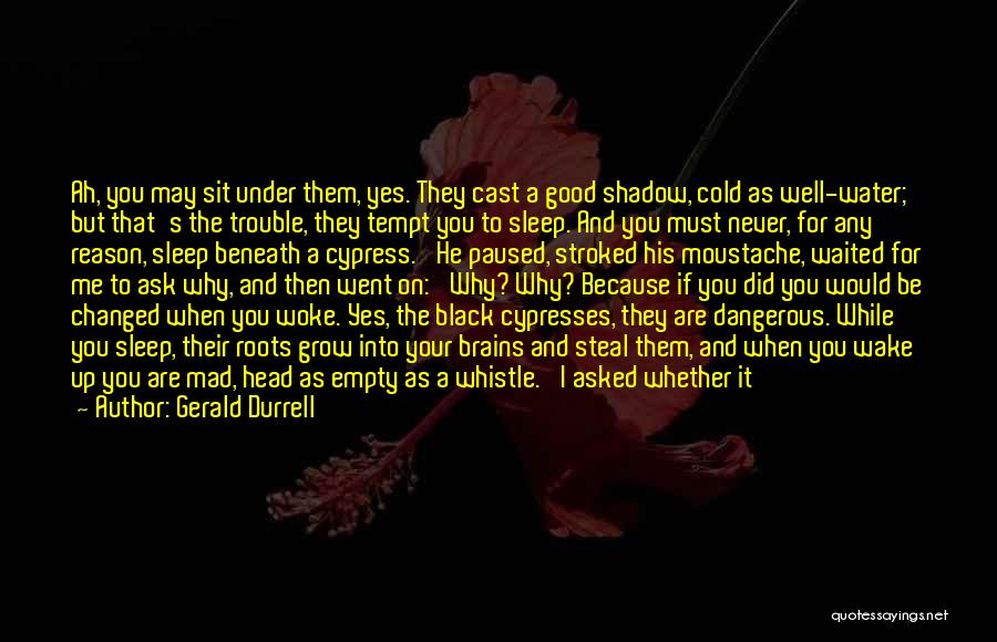 Moustache Quotes By Gerald Durrell