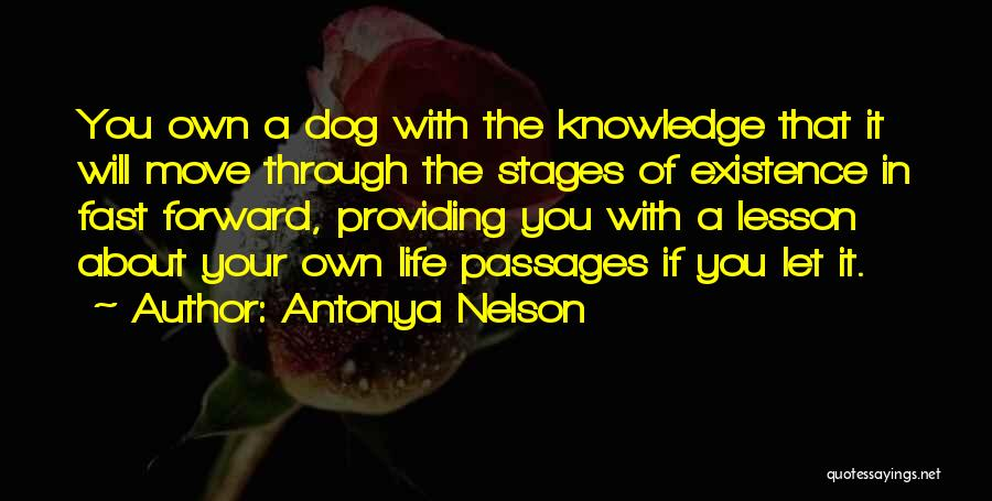 Moving Through Life Quotes By Antonya Nelson