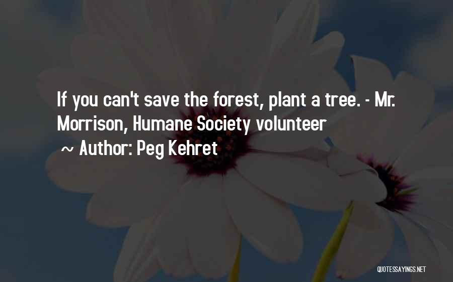 Mr Morrison Quotes By Peg Kehret