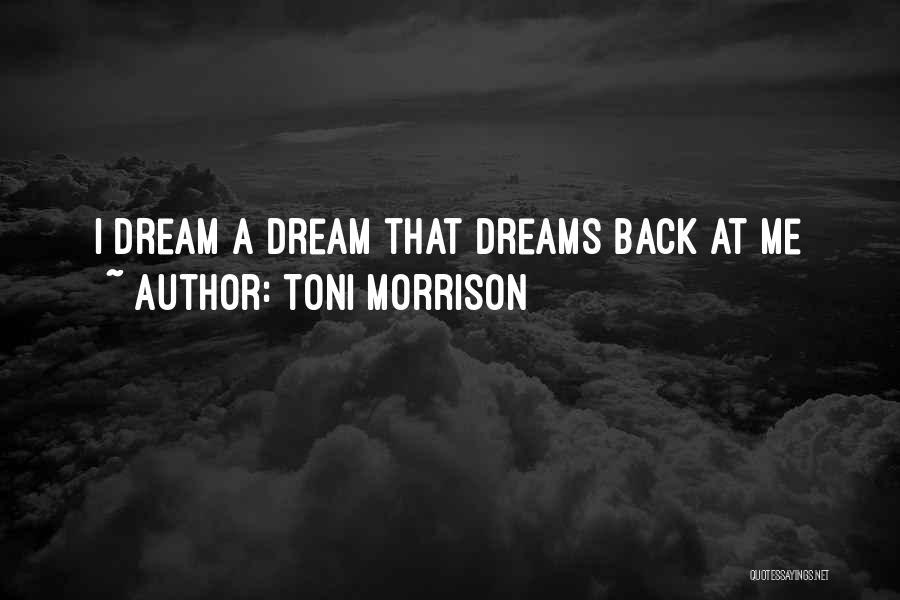 Mr Morrison Quotes By Toni Morrison