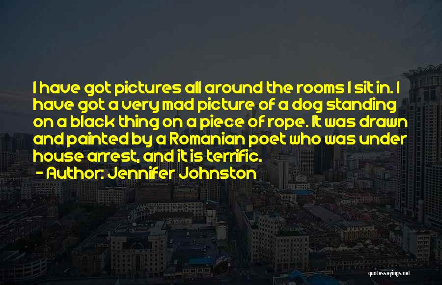 Mr Terrific Quotes By Jennifer Johnston