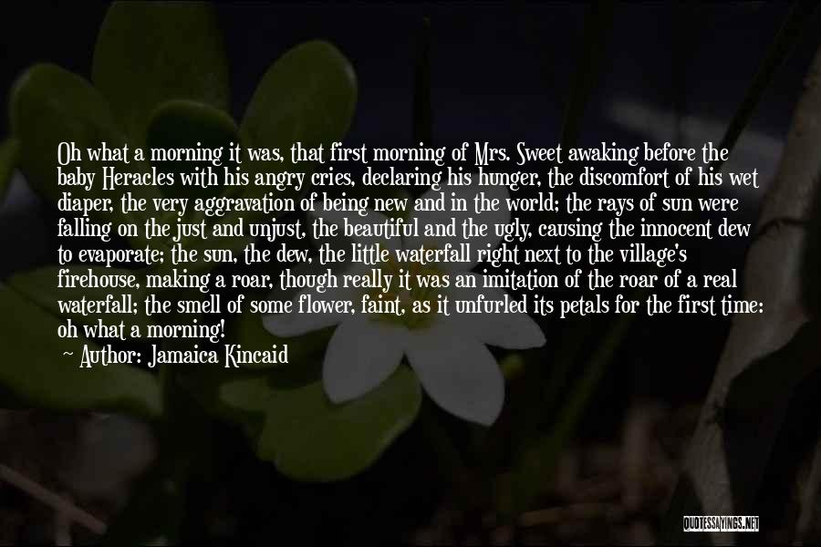 Mrs Right Quotes By Jamaica Kincaid