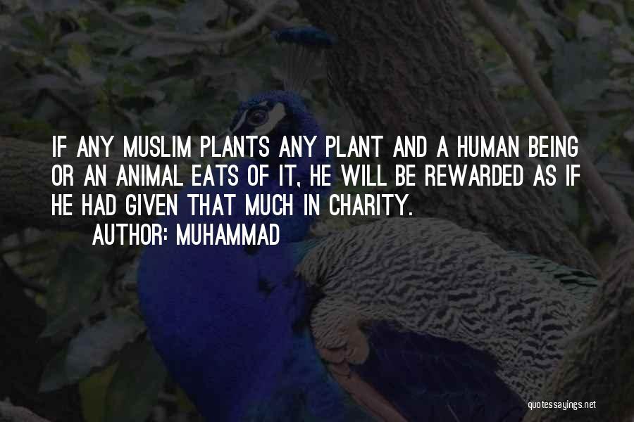 Muhammad Quotes 1662552