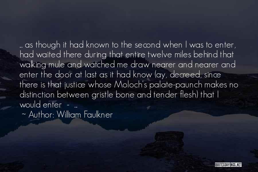 Mule Bone Quotes By William Faulkner