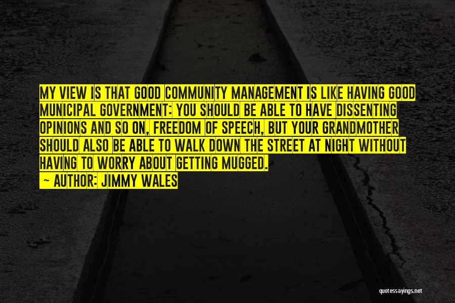 Municipal Government Quotes By Jimmy Wales