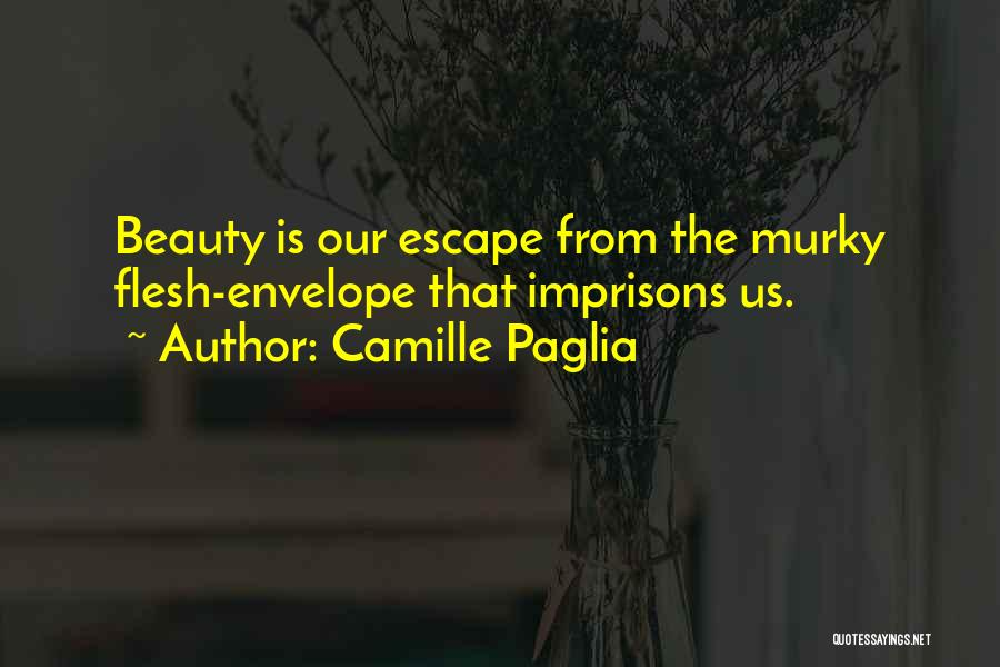 Murky Quotes By Camille Paglia
