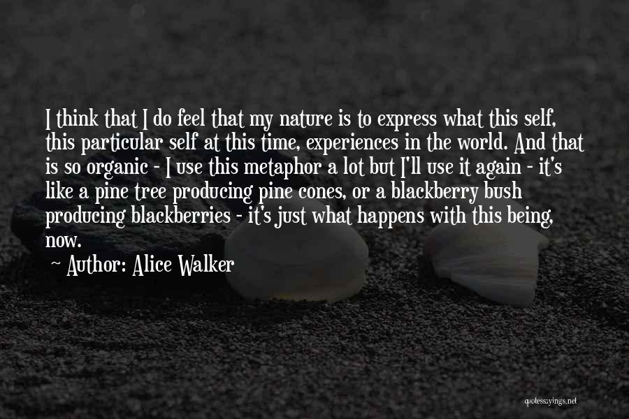 My Blackberry Quotes By Alice Walker