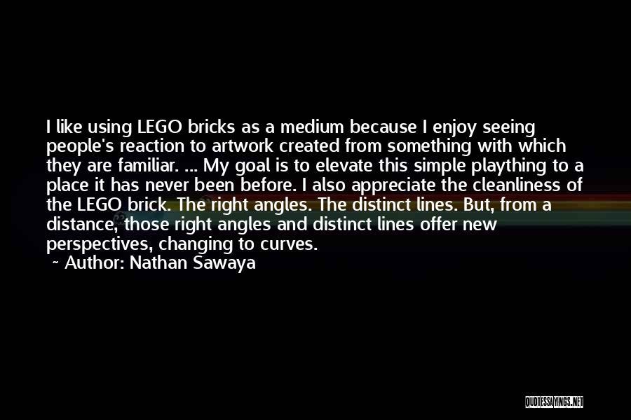 My Curves Quotes By Nathan Sawaya