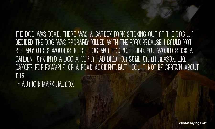 My Dog That Died Quotes By Mark Haddon