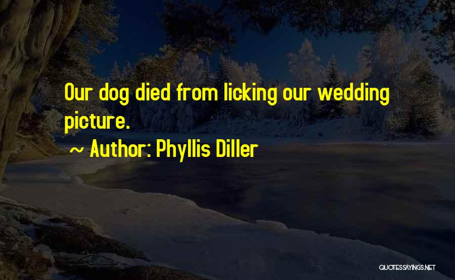 My Dog That Died Quotes By Phyllis Diller