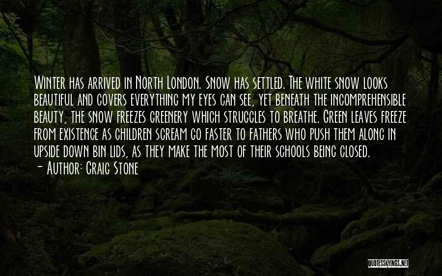 My Eyes See Everything Quotes By Craig Stone