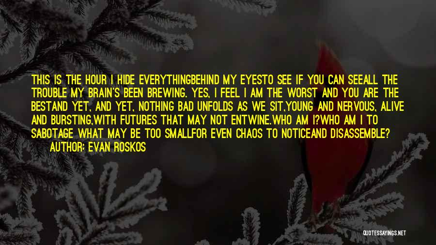 My Eyes See Everything Quotes By Evan Roskos