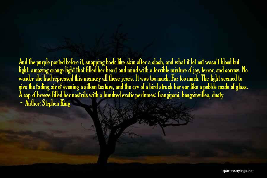 My Heart Is Filled With Joy Quotes By Stephen King