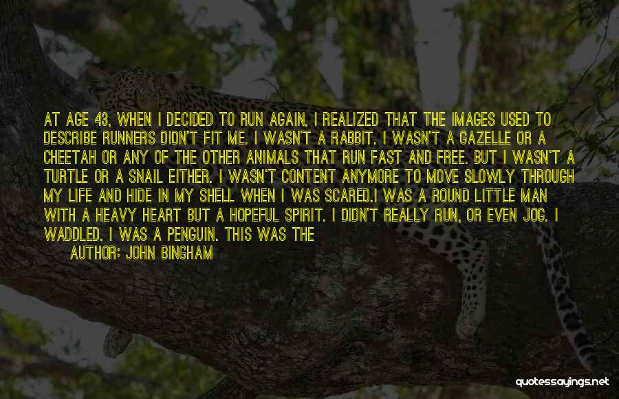 My Heart Is Heavy Quotes By John Bingham
