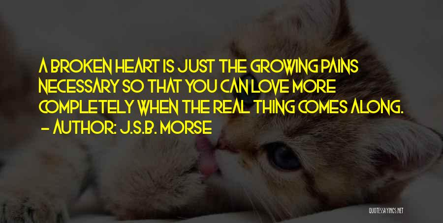 My Heart Pains Quotes By J.S.B. Morse