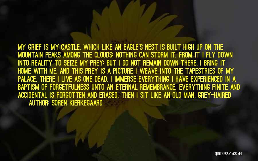 My Home Is My Castle Quotes By Soren Kierkegaard