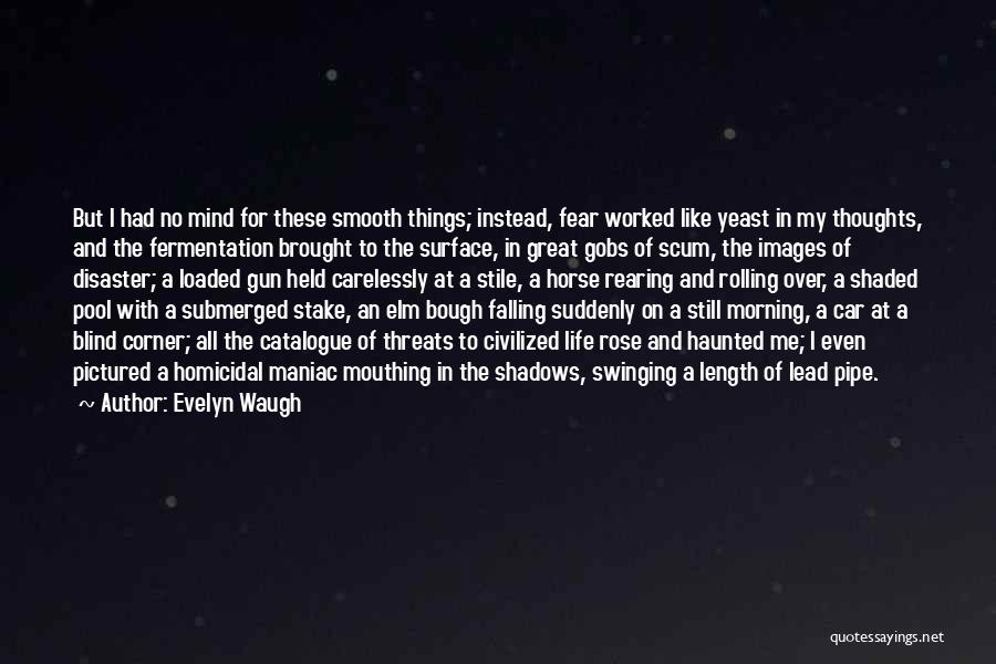 My Horse Quotes By Evelyn Waugh