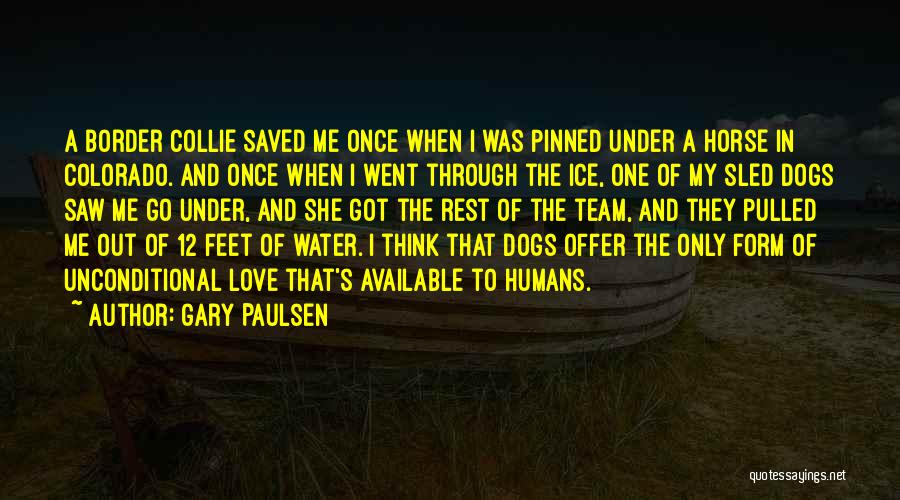 My Horse Quotes By Gary Paulsen