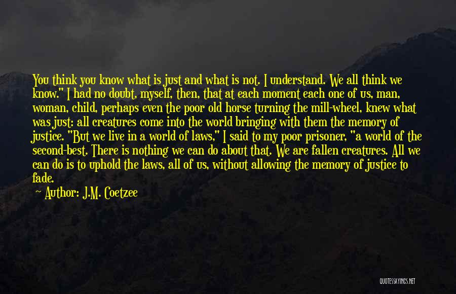 My Horse Quotes By J.M. Coetzee