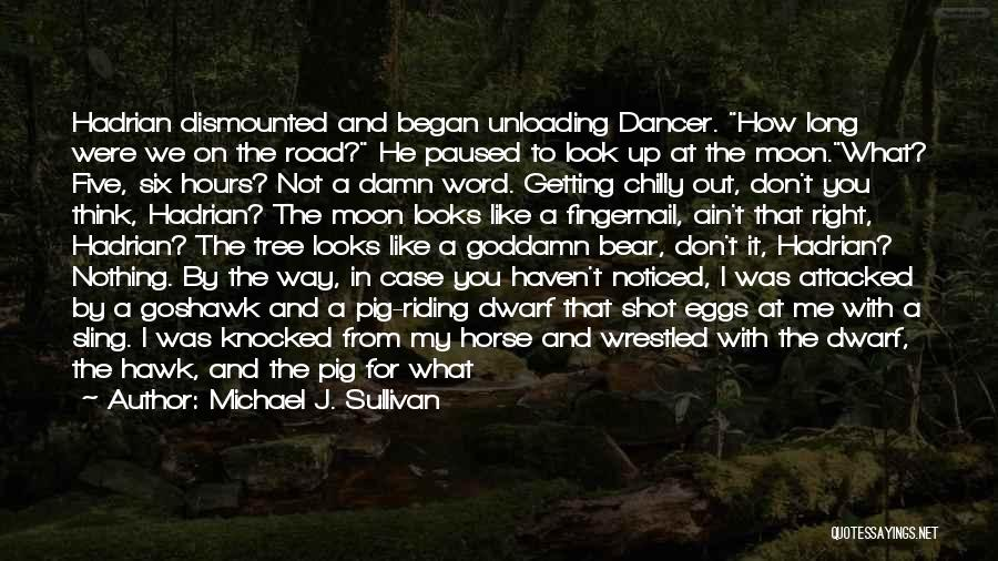 My Horse Quotes By Michael J. Sullivan