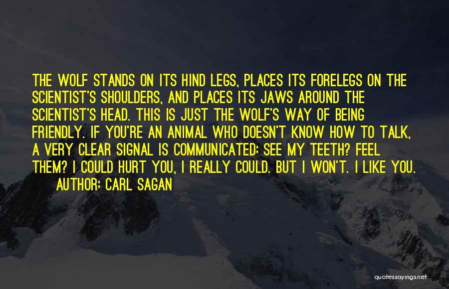 My Legs Hurt Quotes By Carl Sagan