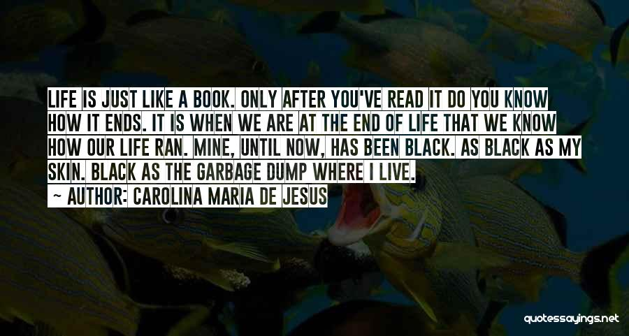 My Life Ends Quotes By Carolina Maria De Jesus