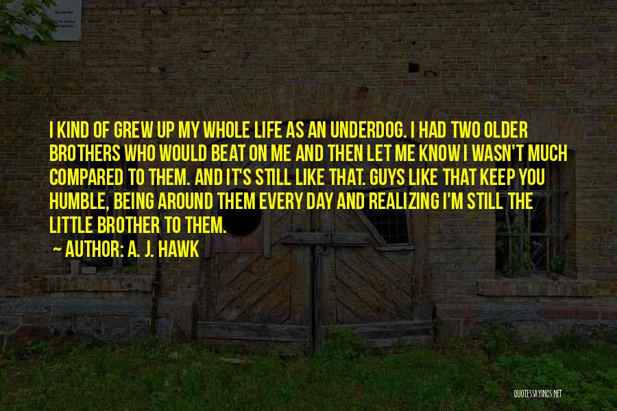 My Little Brothers Quotes By A. J. Hawk