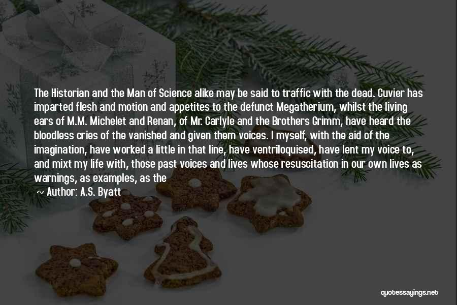 My Little Brothers Quotes By A.S. Byatt