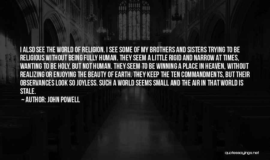 My Little Brothers Quotes By John Powell