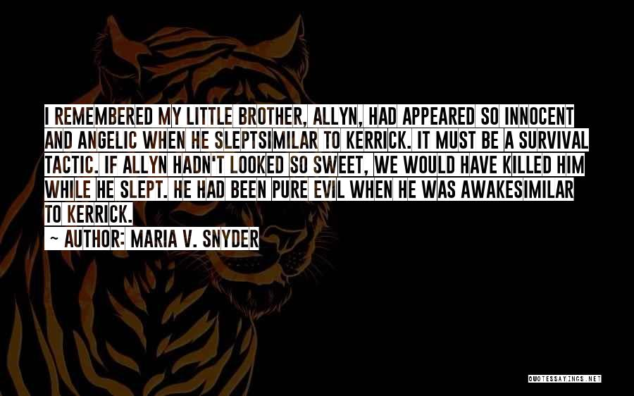 My Little Brothers Quotes By Maria V. Snyder