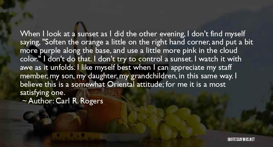 My Look Attitude Quotes By Carl R. Rogers