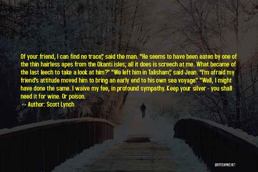 My Look Attitude Quotes By Scott Lynch