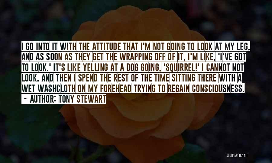 My Look Attitude Quotes By Tony Stewart