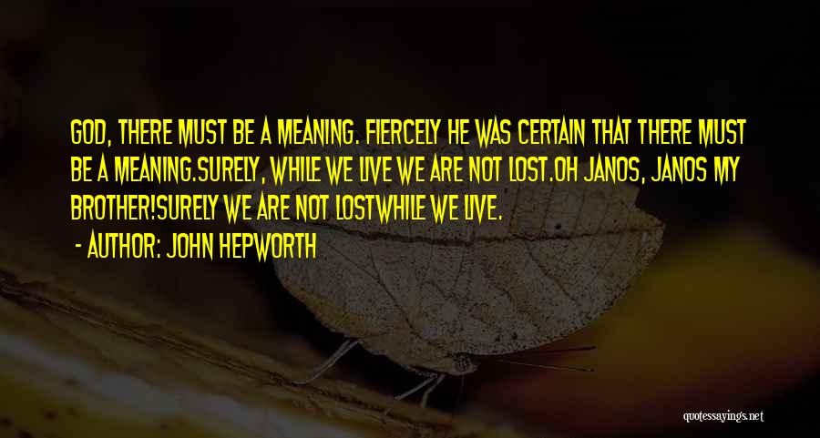 My Lost Brother Quotes By John Hepworth