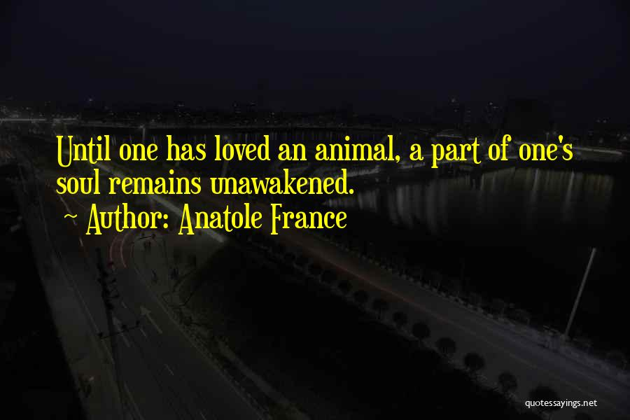 My Love Still Remains Quotes By Anatole France
