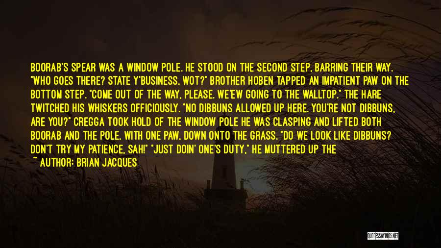 My One And Only Brother Quotes By Brian Jacques