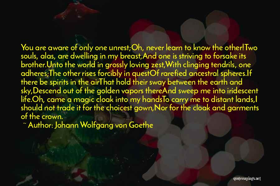 My One And Only Brother Quotes By Johann Wolfgang Von Goethe