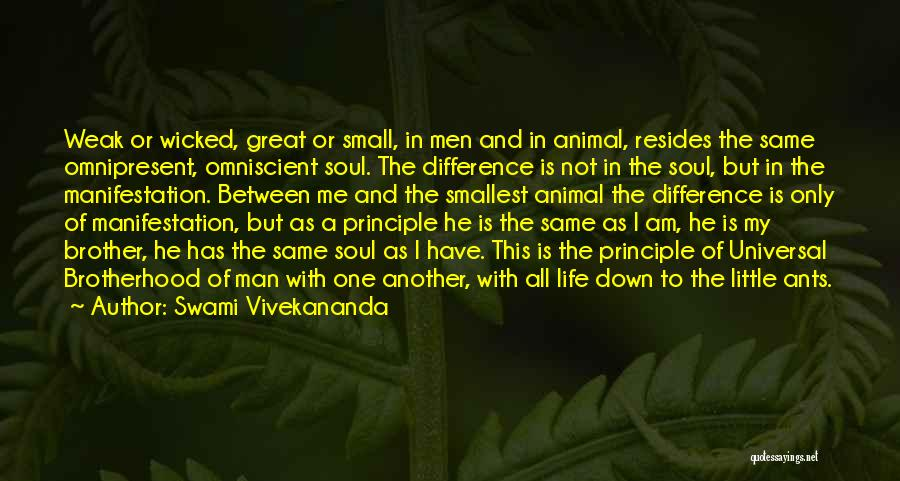 My One And Only Brother Quotes By Swami Vivekananda