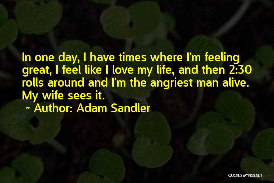 My One Great Love Quotes By Adam Sandler