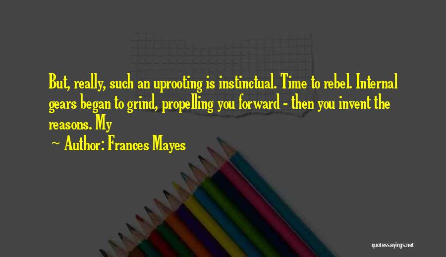 My Reasons Quotes By Frances Mayes