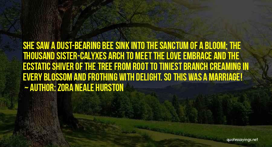 My Sister Marriage Quotes By Zora Neale Hurston
