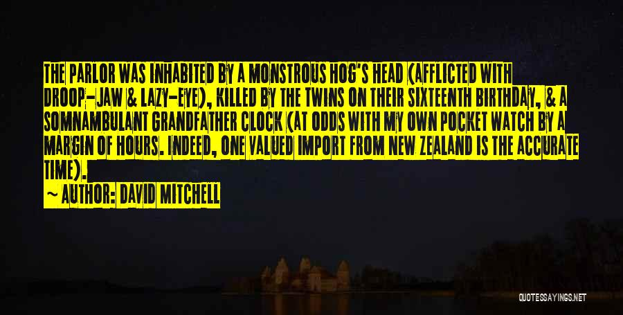 My Sixteenth Birthday Quotes By David Mitchell