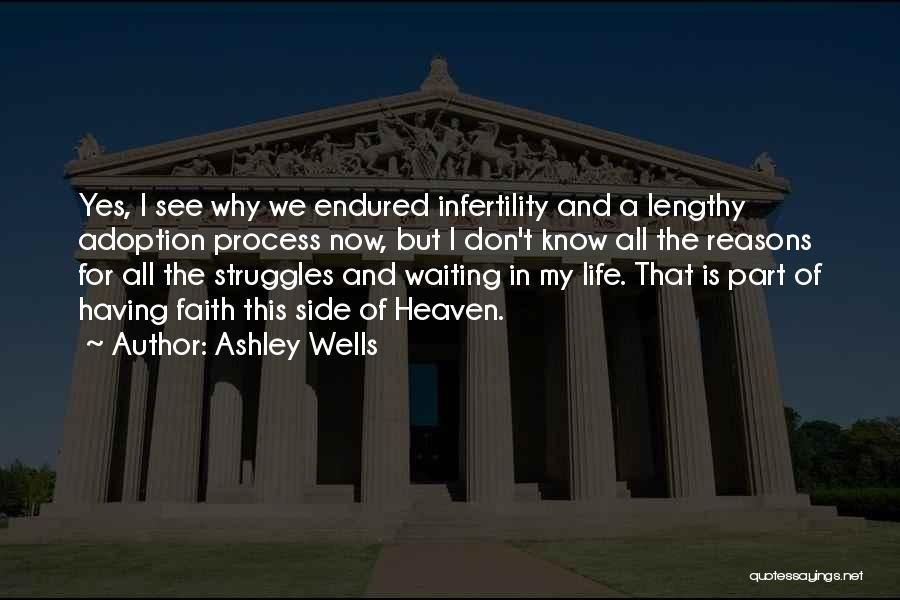 My Struggles Quotes By Ashley Wells