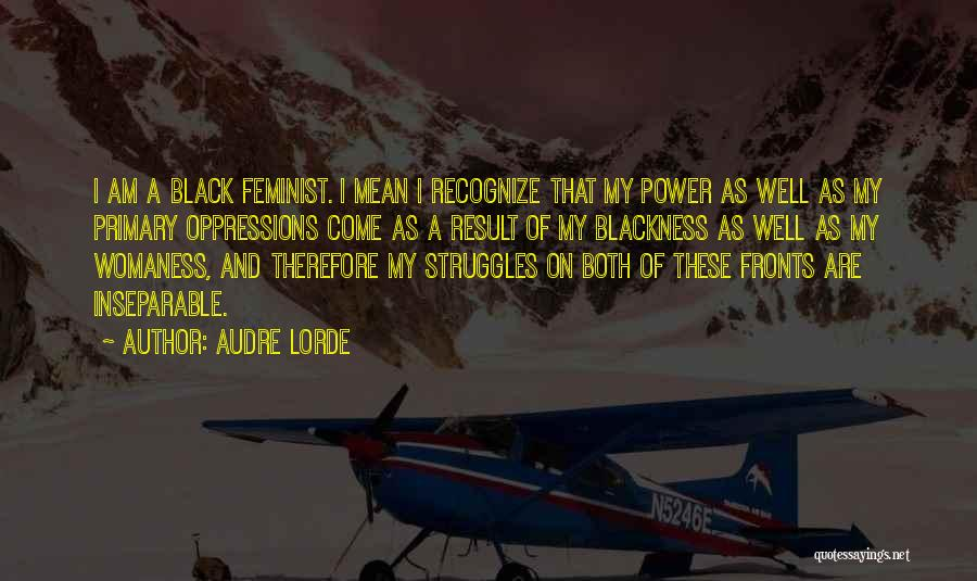 My Struggles Quotes By Audre Lorde