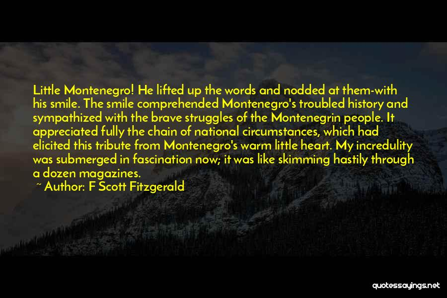 My Struggles Quotes By F Scott Fitzgerald